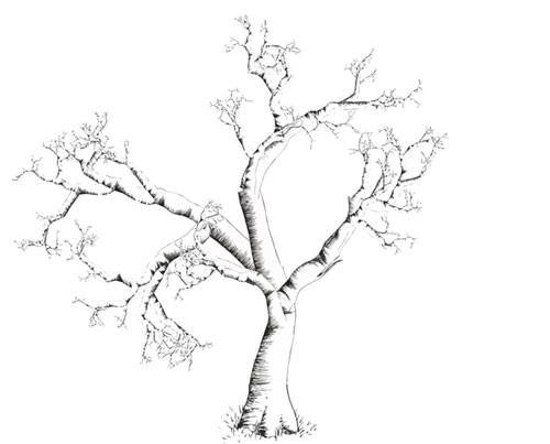 treegardena0000.jpg